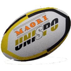 Maori Eco Junior Trainerball
